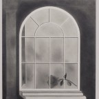 Milano Chow, Arch Window with Rose, 2012; graphite on paper, 25 x 21 inches
