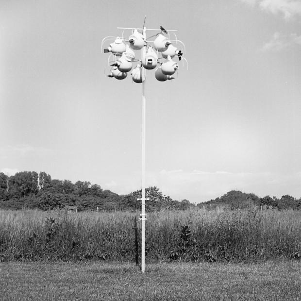 "Kelsey Halliday Johnson, ""Social Architectonics 03"", archival pigment print"
