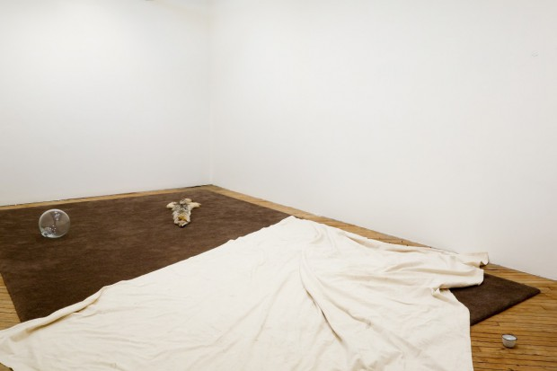 Installation view Visible works: Painting, 2015 Carpet, 2013 Dropcloth, 2012 Float, 2013 Coyote, 2014 Salt, 2015