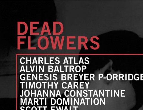 vox-populi-dead-flowers-cover-thumb