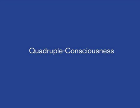 vox-populi-quadruple-consciousness-cover-thumb