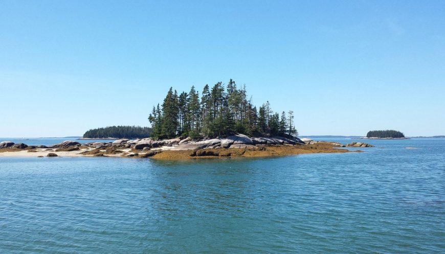 Barred Island Preserve, Deer Isle, August 2016